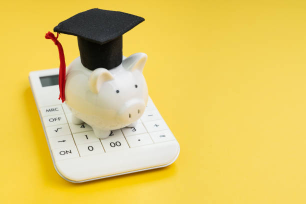 Student loan payment calculation, scholarship or saving for school and education concept, white piggy bank wearing graduation hat on calculator on yellow background with copy space.
